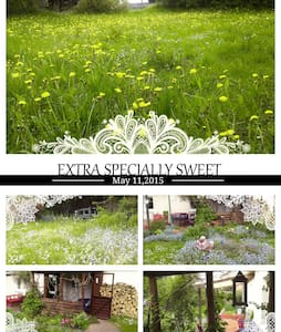 PRETTY COUNTRY COTTAGE IN GORGEOUS SURROUNDING+Spa - Brüssow - Haus