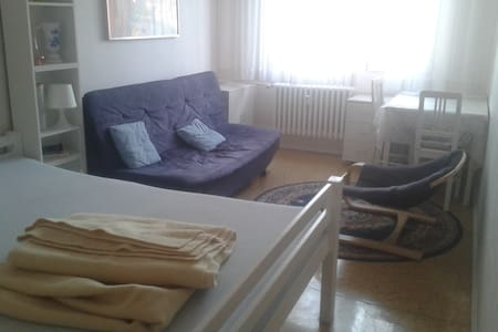 Nice, quiet, clean room close to Prague Castle - Praha - Leilighet