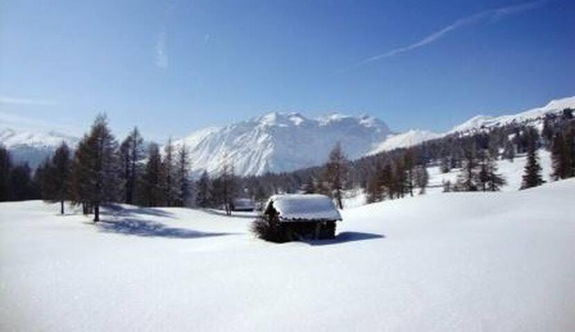 Ferienwohnung am Bergbauernhof