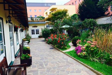 Ruhiges Apartment im Herzen von Krems - Krems an der Donau - Leilighet