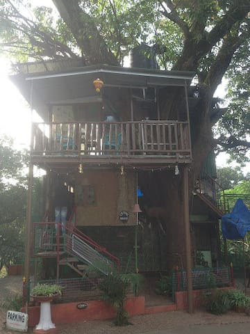 Only Tree House in Panchgani - Panchgani