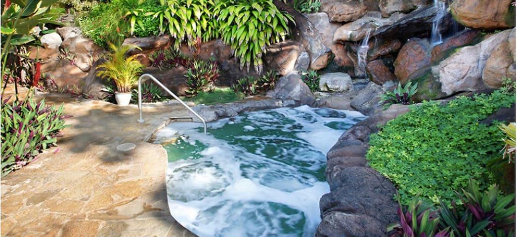Beautiful Villa in Kauai, Hawaii - プリンスビル - 別荘
