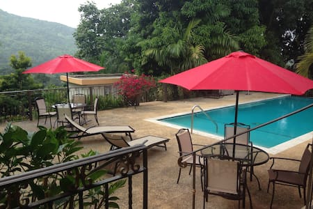 Indulge yourself with a Rainforest Getaway! - Río Grande