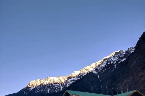Flower Valley Hotel,Lachung