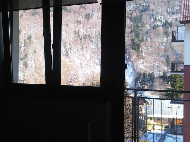 Luminous, family-friendly, breathtaking view, quit - Sinaia - Apartment