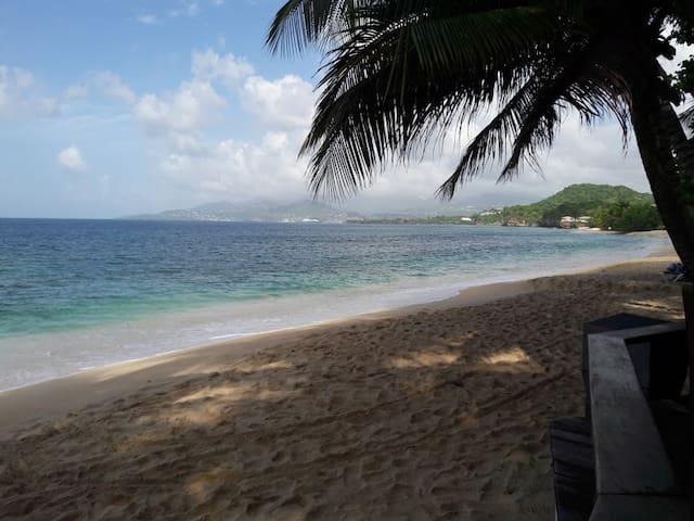 The Beaches of Grenada - Grand Anse