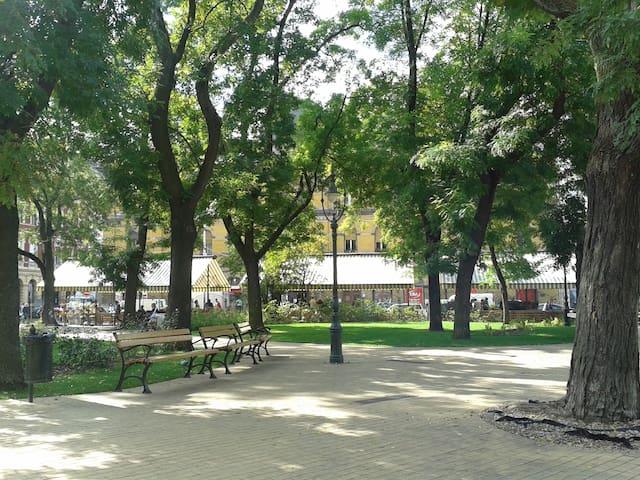 Hunyadi Garden