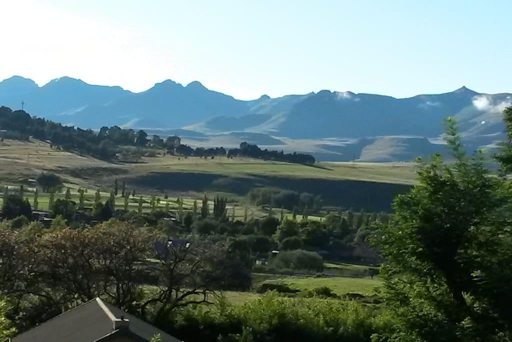Gentle Presence - Mountain Views