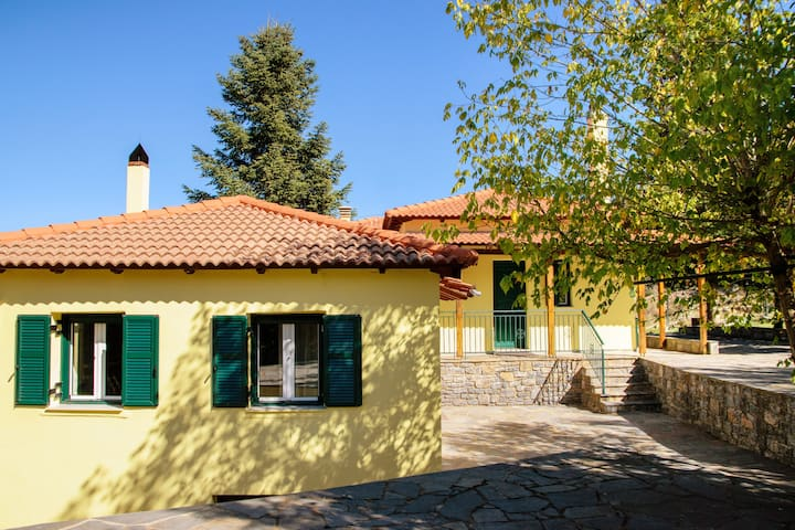 Helenis' double house in Methydrio