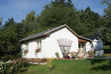50 qm Ferienhaus am Elsterblick in Bad Elster - Bad Elster - Квартира