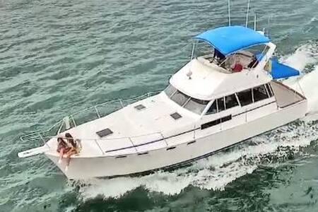 Motoryacht Life - Chula Vista