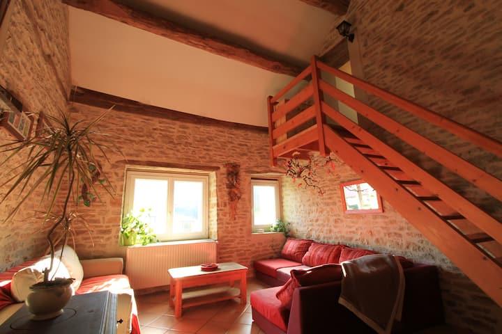 Maison « famille & nature » en Bourgogne