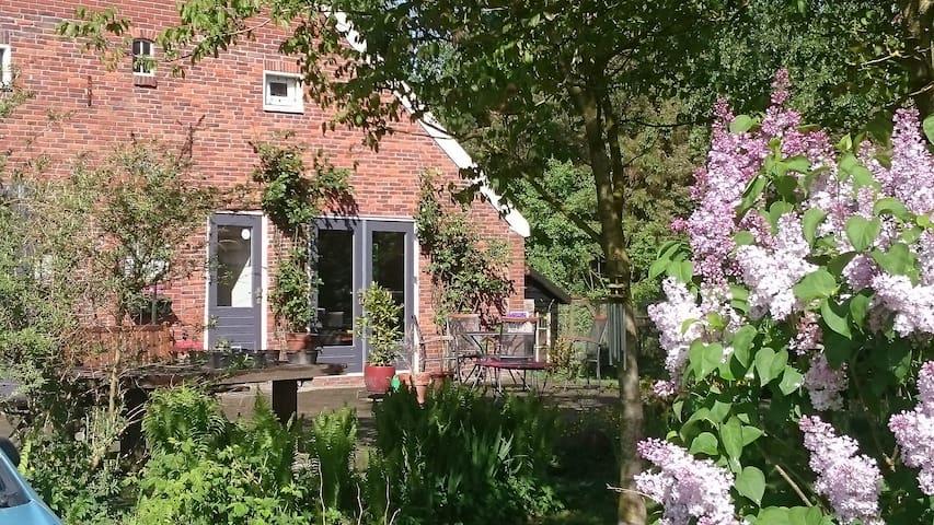 App/B&B Drenthe Drouwenerveen - Drouwenerveen - Apartment
