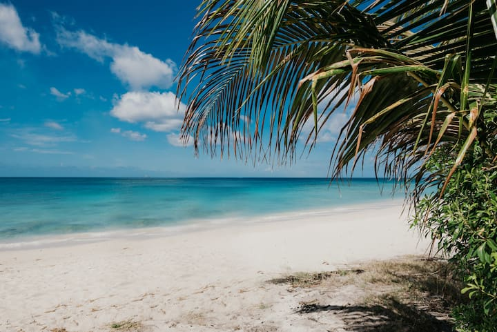 Starfish Beach Apt.