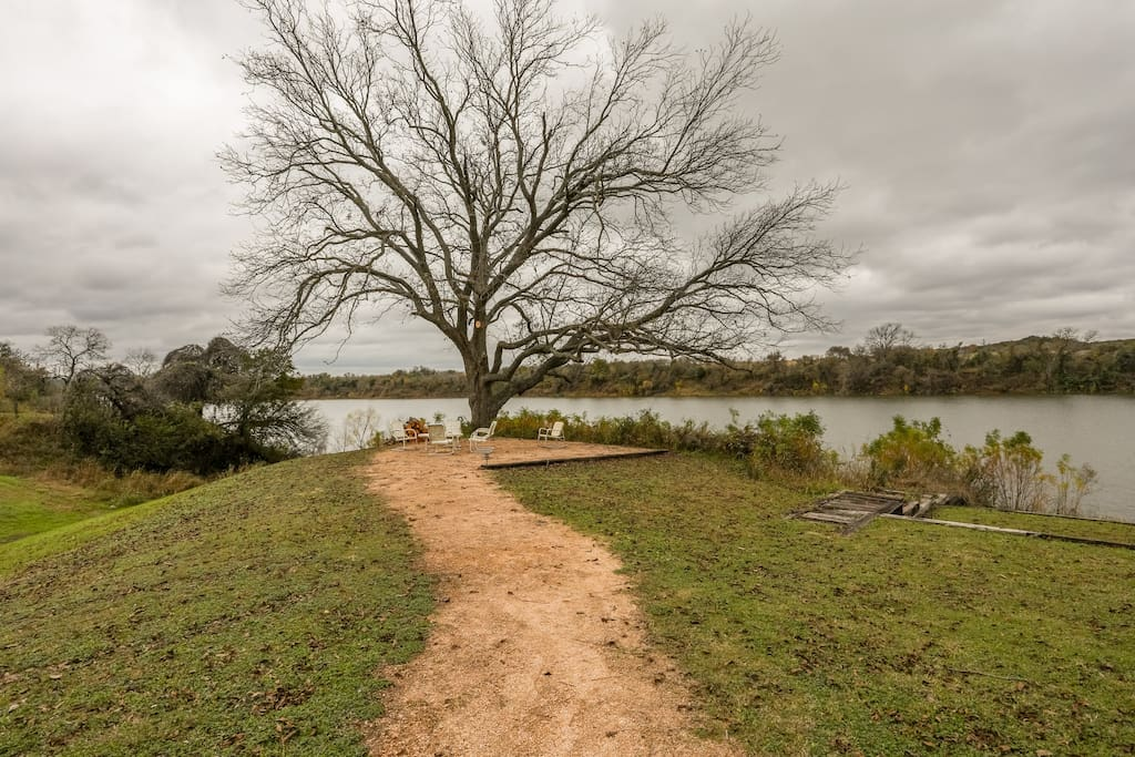 100+ year old pecan that is our lakefronts keeper