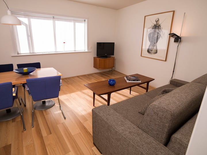 Cozy central apartment in the heart of Reykjaviks city center