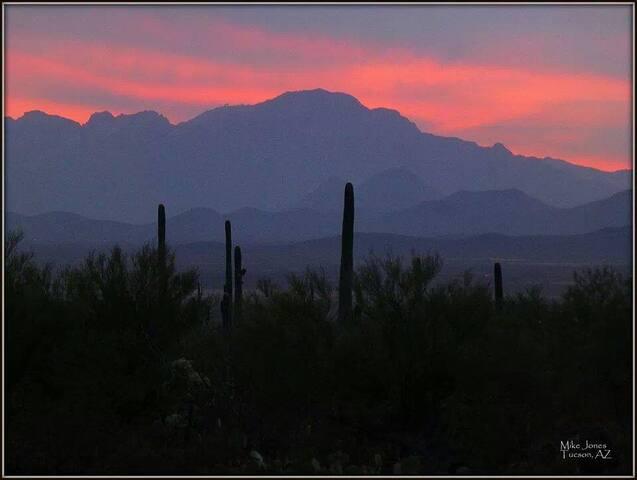 Desert Retreat 1 BR/DB Adjacent to Saguaro NP West