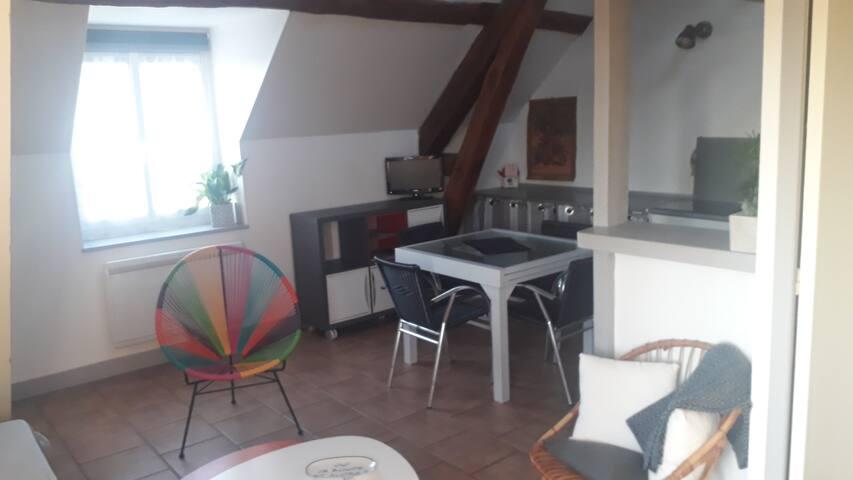 Appartement proche châteaux de la Loire
