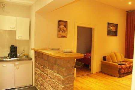 Schönes und helles zwei Zimmer Altstadtappartment - Kaiserslautern - Apartamento