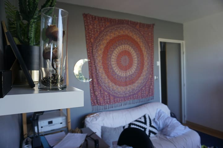 Appartement 30m2 proche hypercentre Lille - Lille - Pis