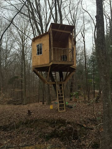 1/2 Hundred Acre Tree House