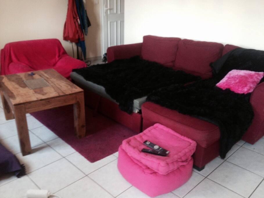 Le canapé du salon peut également accueillir 2 personnes      The living room couch can also host 2 people.