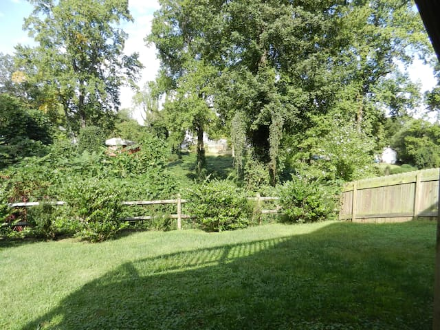 Fully fenced rear yard.  Rail fence is securely wired to keep even tiny dogs safe!