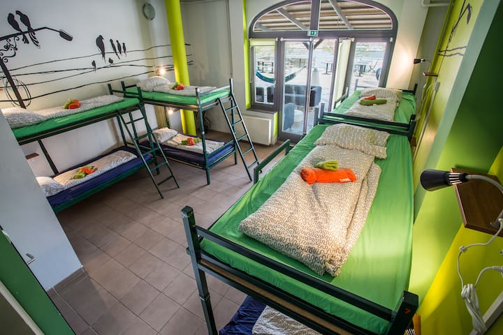 Bed in 10 bed dormitory Island Hostel Budapest - Budapest - House