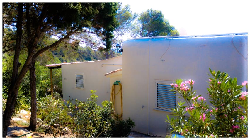 Nice 4 persons bungalow in the north of Ibiza - Sant Joan de Labritja - Bungalow