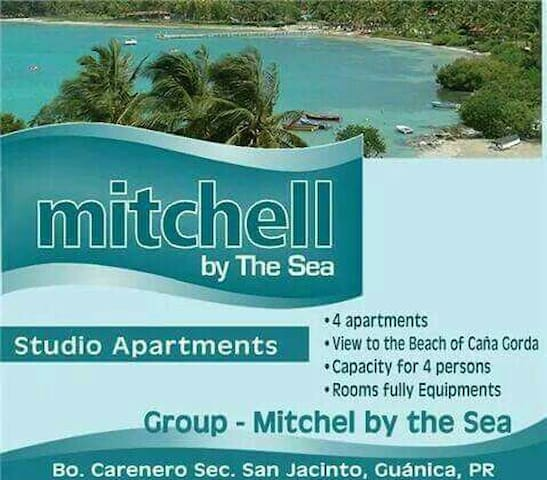 Beach front apart. 3- Mitchell by the Sea