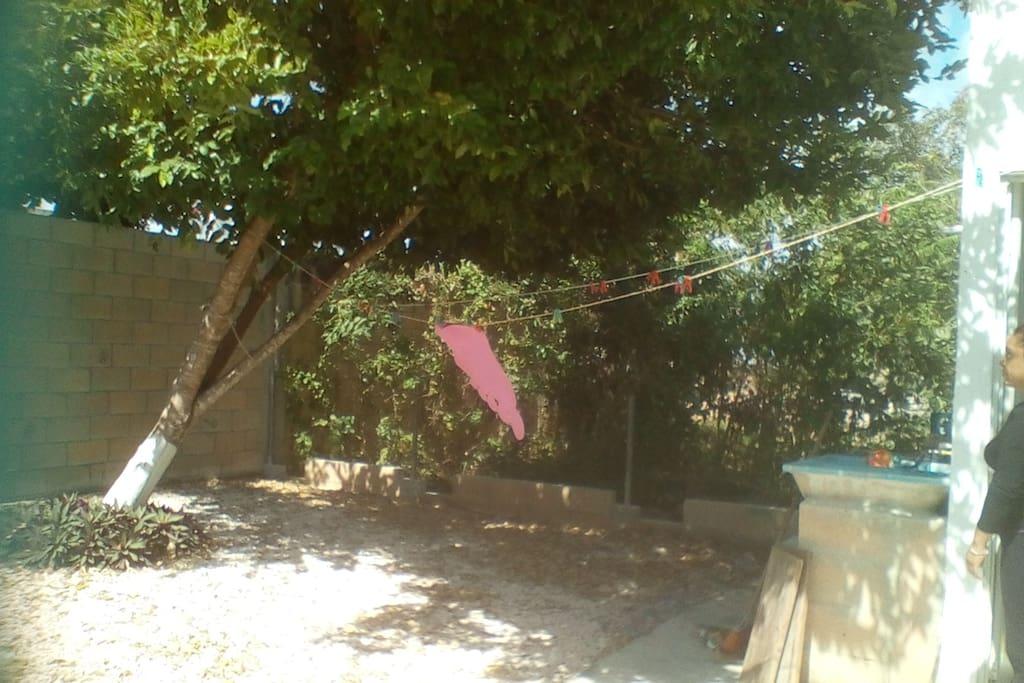 Patio de descanso y Coimbra confortable de árbol, listo para hamaca