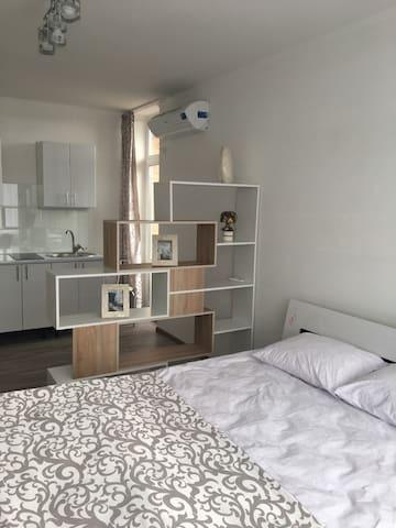 Апартаменты Люксембург улучшенные - Odessa - Hotellipalvelut tarjoava huoneisto