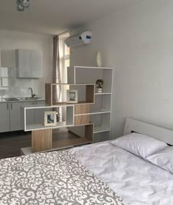 Апартаменты Люксембург улучшенные - Οδησσός - Εξυπηρετούμενο διαμέρισμα