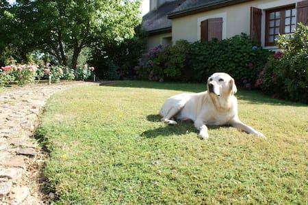 Maison au calme avec grand jardin - Châteauneuf-sur-Sarthe