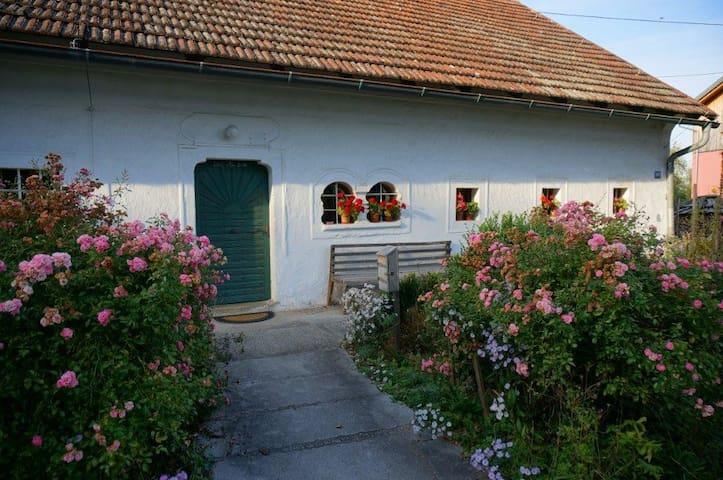 Wohnen am Bauernhof / Farm holidays - Hörsching - Flat