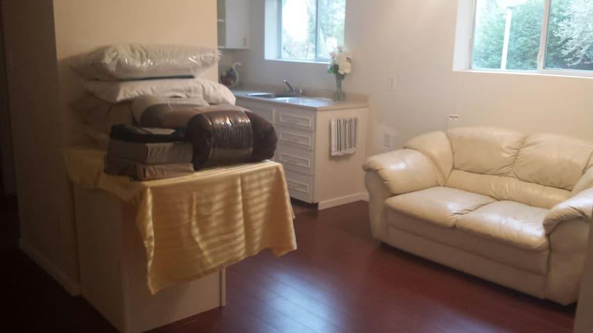 1 Furnished Bedroom.