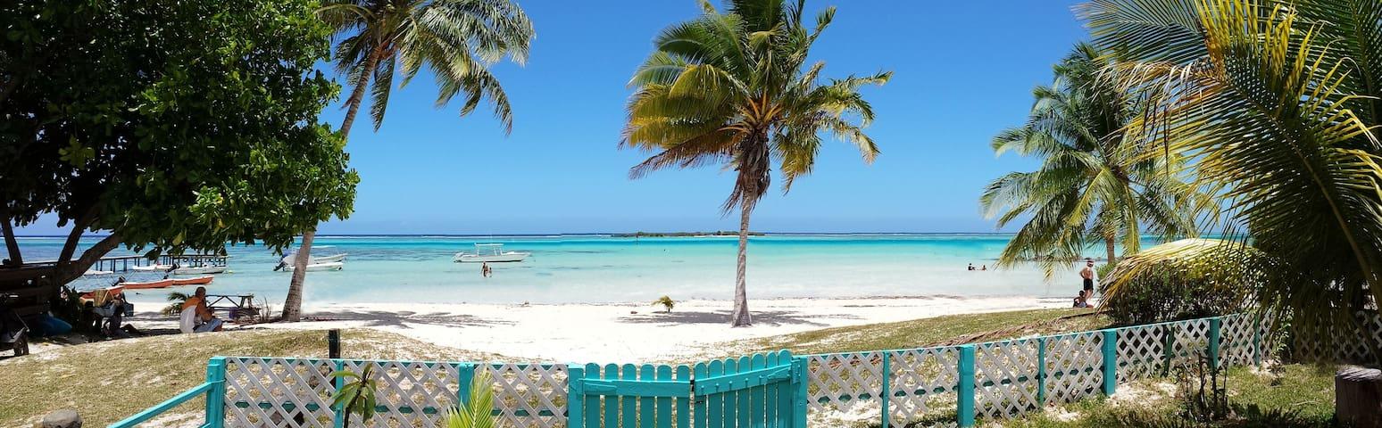 Moorea Bungalow Vanilla sur plage - Windward Islands - Bungalow
