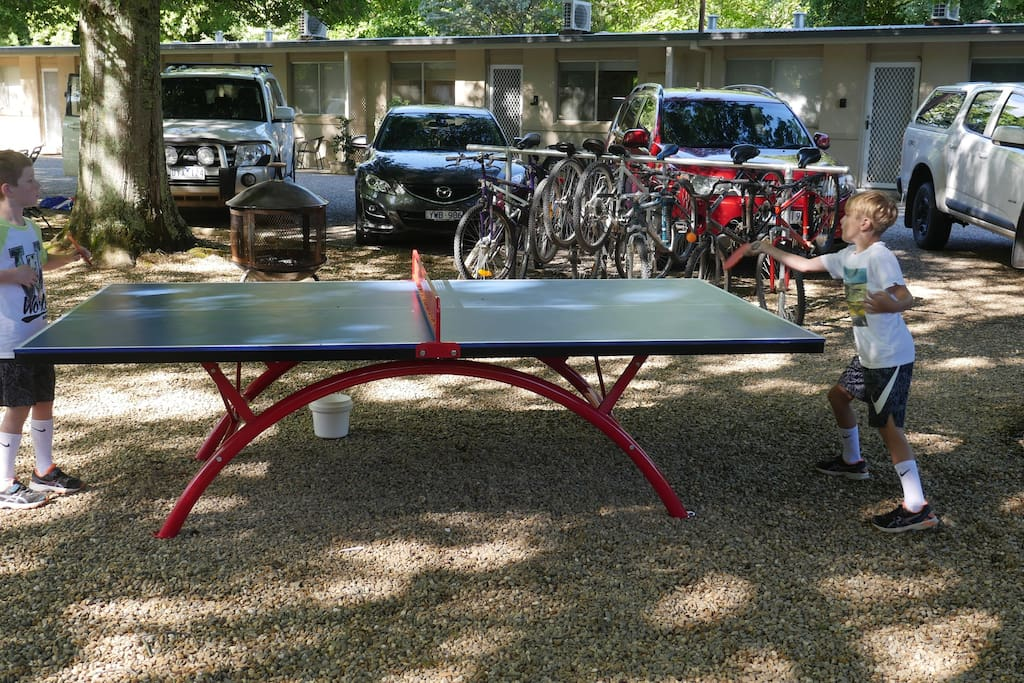We have 2 outdoor table tennis tables