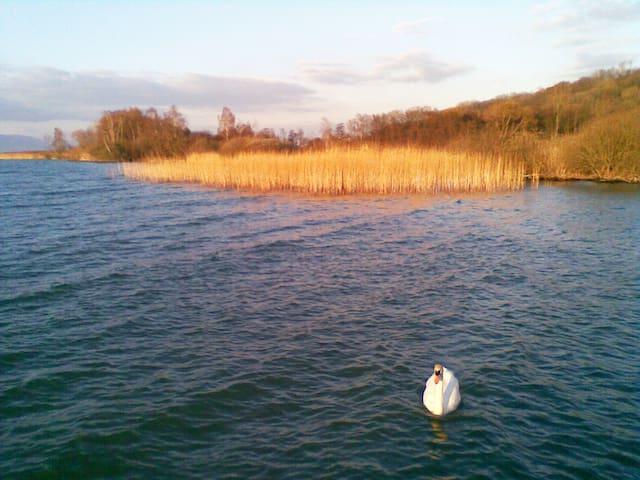 Au bord du lac de Neuchâtel, appart. 2 personnes