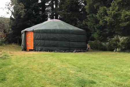 Eskdalemuir accommodation yurt