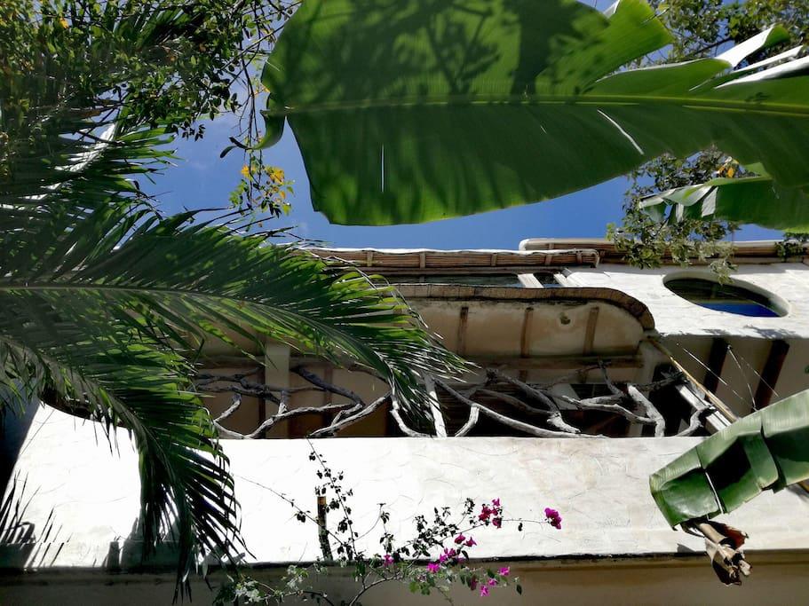 penthouse visto desde abajo
