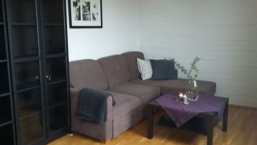 Cozy apartment, 15-20 minutes from city centre. - Hundhamaren - Appartement