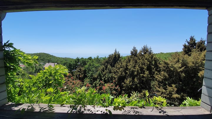 Уютный загородный дом на холме
