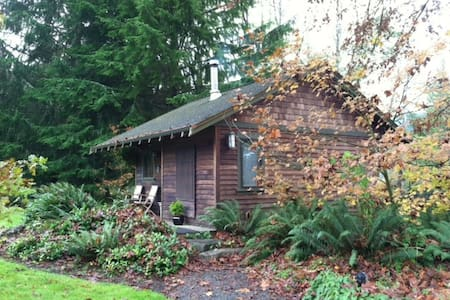 Craftsman cabin on Chehalis River - Cabanya