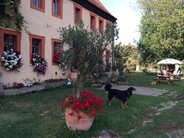 SULZHOF  FARM . Apartment 3 PETRA . 85 m.