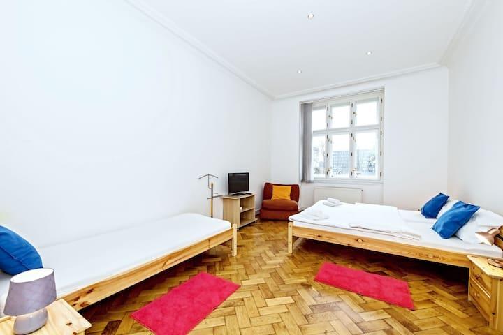 Spacious light apartment in city centre