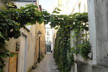 a blind allee in 20th district  (une impasse dans le 20ième) -  village de Charonne - rue des Vignoles