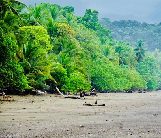 """Cabinas D'Val"" King Cabina Near the Beach"