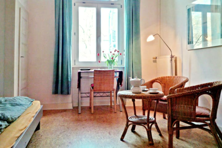 Darmstadt, am Fuß der Mathildenhöhe - Darmstadt - Appartement