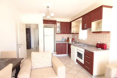 Fully furnished flat 1+1